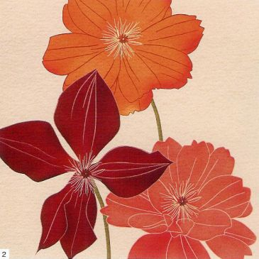 Obrazy  KK Orange Flower Burst, Kate Knight