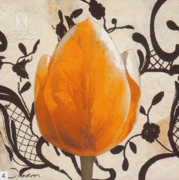 Obrazy  JO Orange Tulip, Joadoor