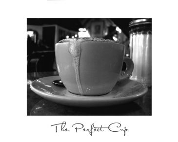 Reprodukce - Požitky - The Perfect Cup, Scott Amour